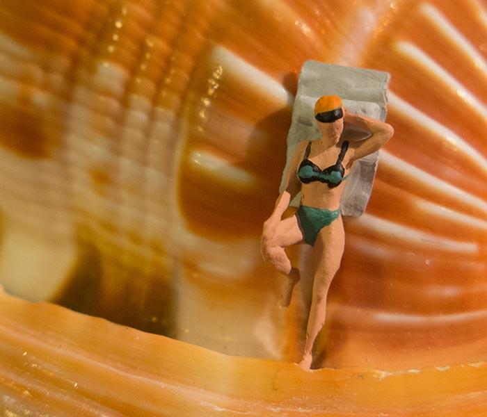Seashell Bather